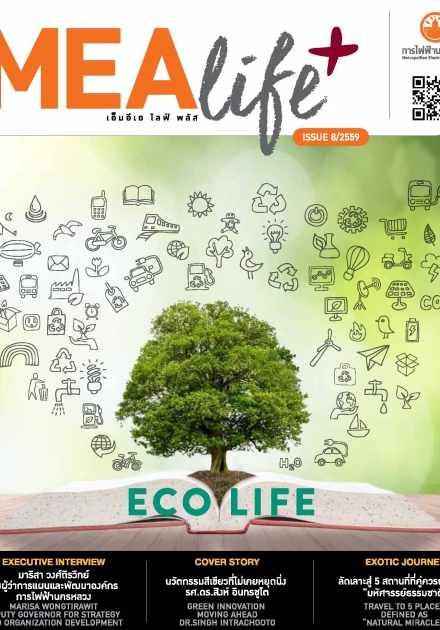 MEA life+ issue 8/2559